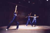 DANCE COLOR .15