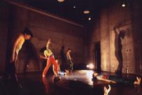 DANCE COLOR .6